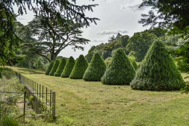 Parnham House - Gardens
